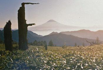 199009-01.jpg